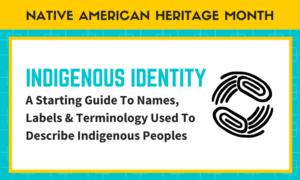 "Indigenous Identity: More Than ""Something Else"""