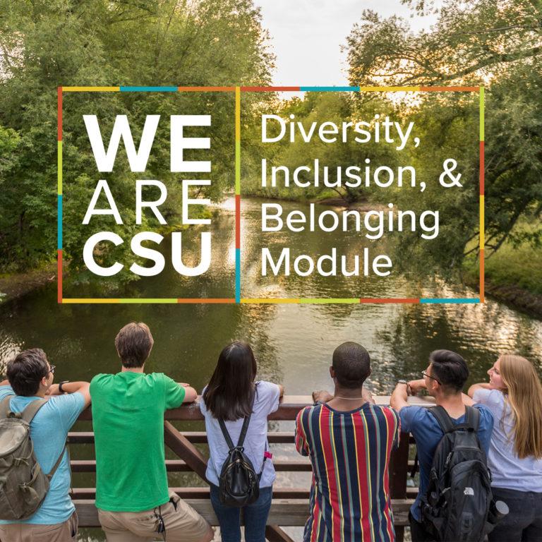 We Are CSU   Diversity, Inclusion & Belonging Module