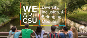 We Are CSU Banner: Diversity, Inclusion and Belonging Module