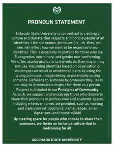 CSU Pronoun Statement